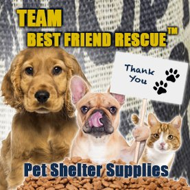 pet-supplies-corporate-team-building-activity CSR Team Building - Corporate Social Responsability Team Activities & Events