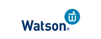 watson Corporate Teambuilding - Professional Teambuilding